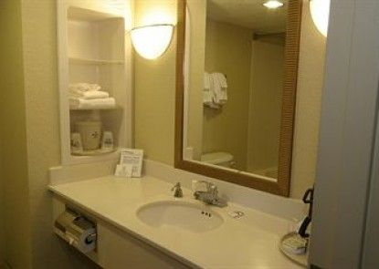 Holiday Inn Express Hotel & Suites Palm Coast Teras