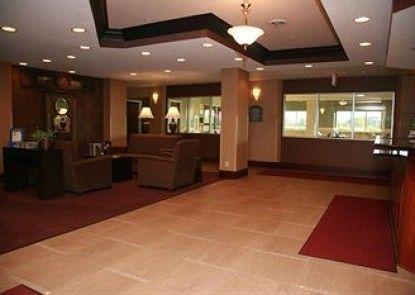 Holiday Inn Express New Haven Teras