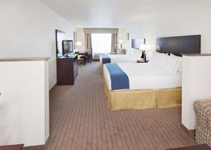 Holiday Inn Express & Suites Omaha I-80 Teras