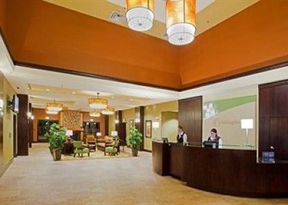Holiday Inn Hotel & Suites DENVER AIRPORT Teras