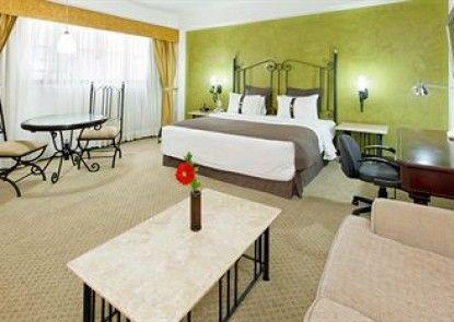 Holiday Inn Hotel & Suites Guadalajara-Centro Historico Teras