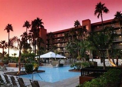 Holiday Inn Hotel & Suites Phoenix - Mesa / Chandler Teras