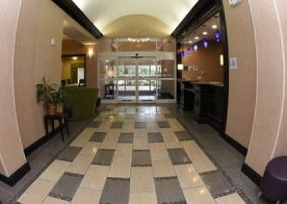 Holiday Inn Express Hotel & Suites Baton Rouge North