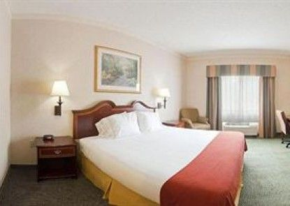 Holiday Inn Express Hotel & Suites Buford-Mall of Georgia