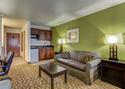 Holiday Inn Express Hotel & Suites Montrose-Townsend