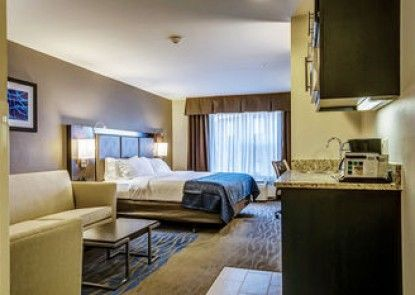Holiday Inn Express St. Louis West - O\'Fallon