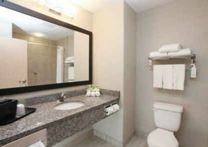 Holiday Inn Express & Suites Grande Prairie