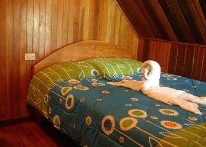 Hostel Monteverde Backpackers