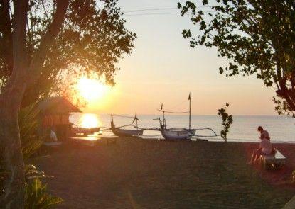 Hotel Bali Taman Lovina Resort & Spa Pemandangan