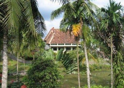 Hotel Deli River and Restaurant Omlandia Pemandangan