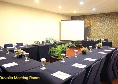 Hotel Roditha Banjarbaru Ruangan Meeting
