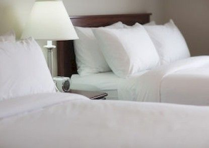 Hotel Arctic