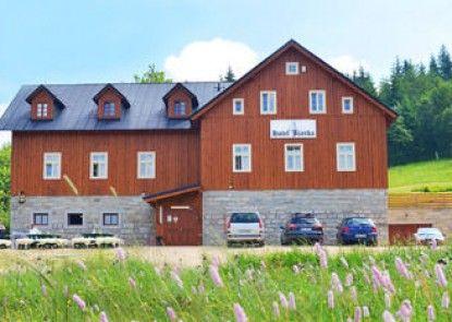 Hotel Jizerka 4