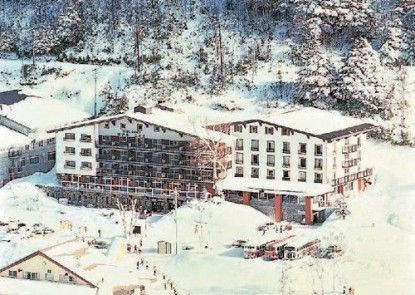 Hotel Kodama