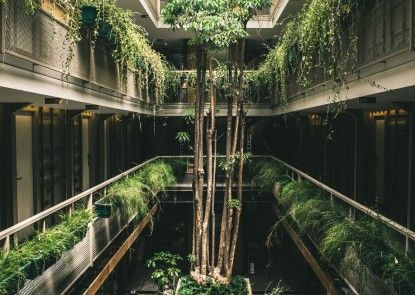 Hotel Kollektiv Pemandangan