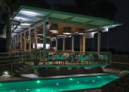 Hotel Palma de Oro