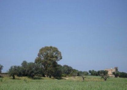 I Casini Sant\'Agata