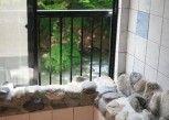 Pesan Kamar Kamar Tradisional, Pemandangan Sungai (hiiragi) di Ichigekan