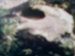 Lasuang Jawi Orok Solok