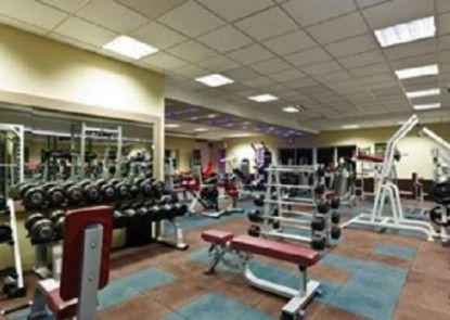 Indoluxe Rent Apartment Ruangan Fitness