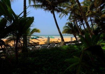 Jaga Bay Resort