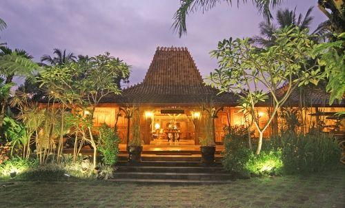 Java Amazon Villa & Resort,Turi