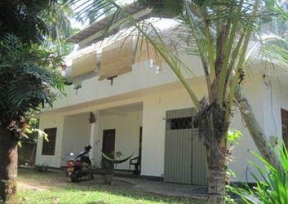 Jungleside House