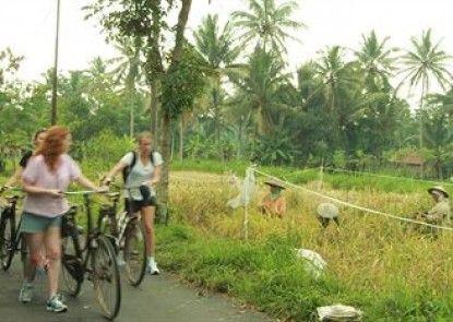 Kampung Labasan Tropical Resort Teras