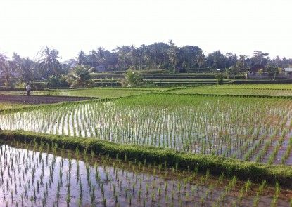 Kanomayasa Ubud Villa