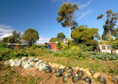Karamea Farm Baches - Rongo Backpackers