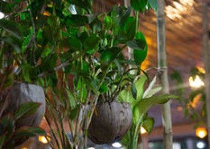 Kirin Marry Angkor Villa
