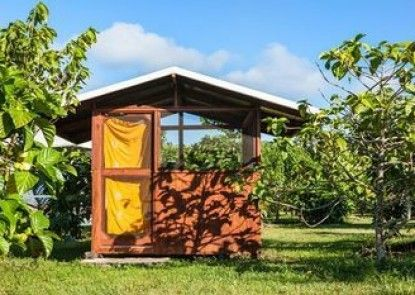 Kirpal Meditation and Ecological Center