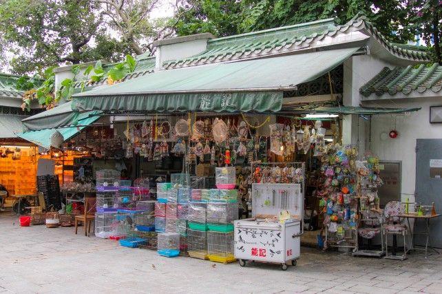 Kowloon Food Tasting Activity