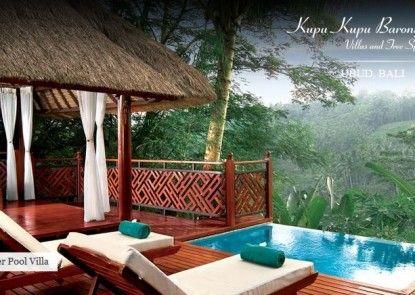 Kupu Kupu Barong Villas & Tree Spa by L\\\'OCCITANE Kolam Renang Pribadi