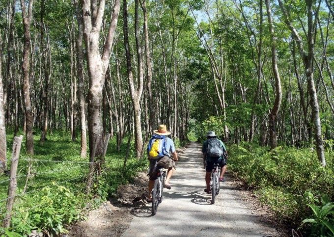 Langkawi Nature Cycling & Scenic Village Tour
