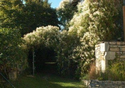 Les jardins de la Contie