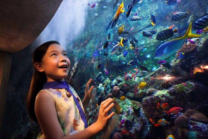 harga tiket Lost Chambers Aquarium Ticket