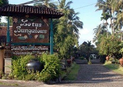 Lotus Bungalows Teras