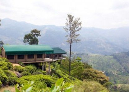 Madulkelle Tea and Eco Lodge