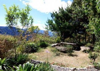 Margaret Garden Villa