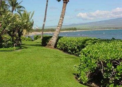 Maui Island Sands Resort Teras