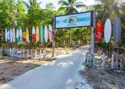 Micky Monkey Beach