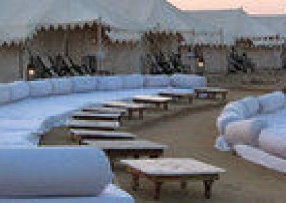 Moonlight Oasis Camp