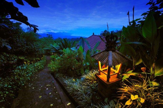 Munduk Moding Plantation, Buleleng