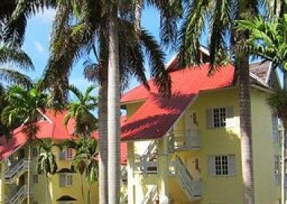 Mystic Ridge Jamaica