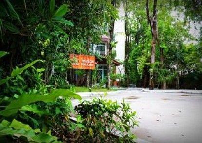 Nata Terrace