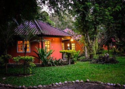 Natural Park Resort De Wangthong