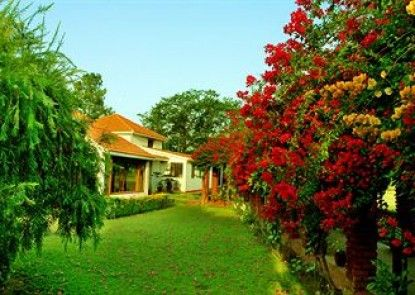 Naturoville Vedic Retreat