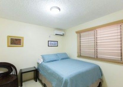New Kingston Guest Apartment IV