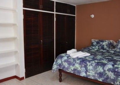 New Kingston Guest Apartment VII